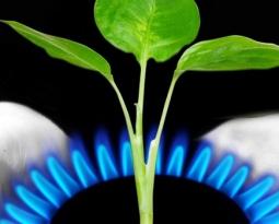 Ahorrar gas en casa: pasos a seguir